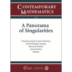 A Panorama of Singularities