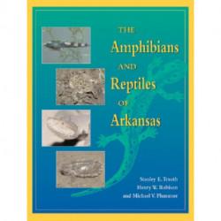 Amphib & Reptiles