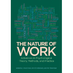 The Nature of Work: Advances in Psychological Theory, Methods and Practice