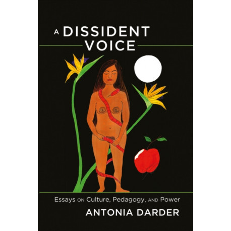 A Dissident Voice: Essays on Culture, Pedagogy, and Power