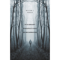 Visionary Perspectives Reincarnated: the story of philosophy