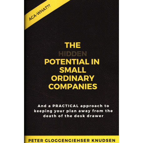 The hidden potential of small ordinary companies