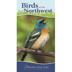 Birds of the Northwest: Your Way to Easily Identify Backyard Birds