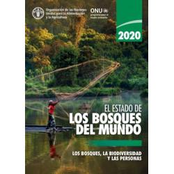 El Estado de los Bosques del Mundo 2020: Los Bosques, la Biodiversidad y las Personas