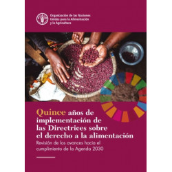 Fifteen Years Implementing the Right to Food Guidelines (Spanish Edition): Reviewing Progress to Achieve the 2030 Agenda