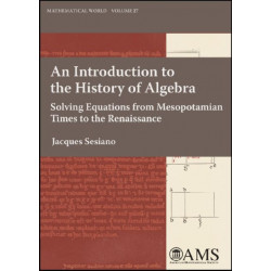 An Introduction to the History of Algebra: Solving Equations from Mesopotamian Times to the Renaissance