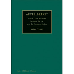 After Brexit: Future Trade Relations Between the UK and the European Union