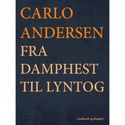 Fra Damphest til Lyntog