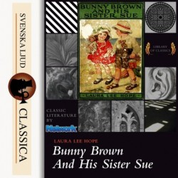 Bunny Brown and his Sister Sue