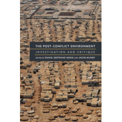 The Post-Conflict Environment: Investigation and Critique