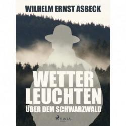 Wetterleuchten über dem Schwarzwald