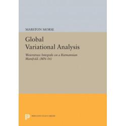 Global Variational Analysis: Weierstrass Integrals on a Riemannian Manifold. (MN-16)