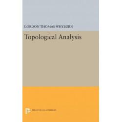 Topological Analysis