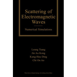 Scattering of Electromagnetic Waves: Numerical Simulations