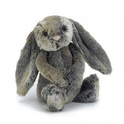 Medium bashful cottontail kanin