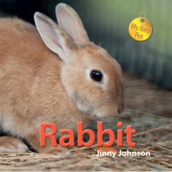 My New Pet: Rabbit