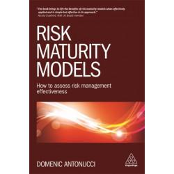 Risk Maturity Models: How to Assess Risk Management Effectiveness