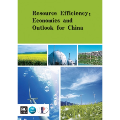 Resource efficiency: economics and outlook for China