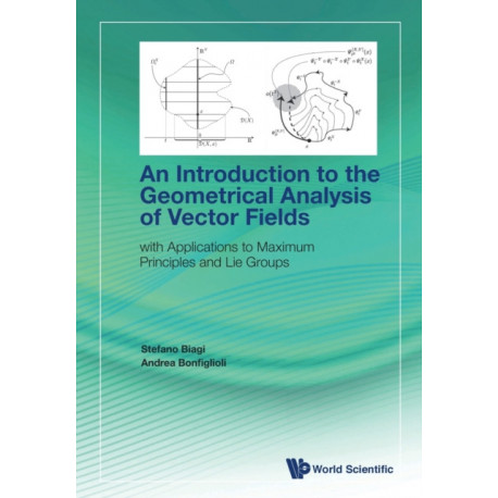 Introduction To The Geometrical Analysis Of Vector Fields, An: With Applications To Maximum Principles And Lie Groups