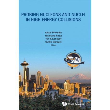 Probing Nucleons And Nuclei In High Energy Collisions - Proceedings Of The Int Program Int-18-3