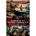 Enkerne på Bajonetmøllen II: To familiers liv i krig og fred fra 1885 til 1915