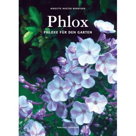 Phlox: Phloxe für den Garten