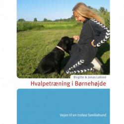 Hvalpetræning i Børnehøjde: Vejen til en trofast familiehund