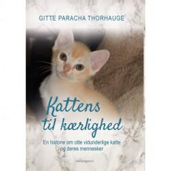 Kattens til kærlighed: En historie om otte vidunderlige katte og deres mennesker