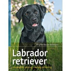 Labrador retriever: udvælgelse, pasning, træning og aktivering