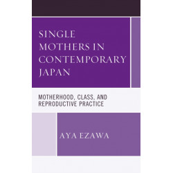 Single Mothers in Contemporary Japan: Motherhood, Class, and Reproductive Practice