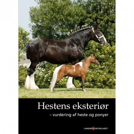 Hestens eksteriør: vurdering af heste og ponyer