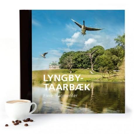 Lyngby-Taarbæk Flere fragmenter