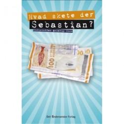 Hvad skete der, Sebastian