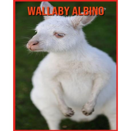 Wallaby Albino: Fatti sorprendenti e immagini sui Wallaby Albino