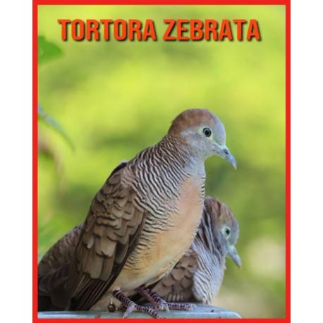 Tortora Zebrata: Fatti super divertenti e immagini incredibili