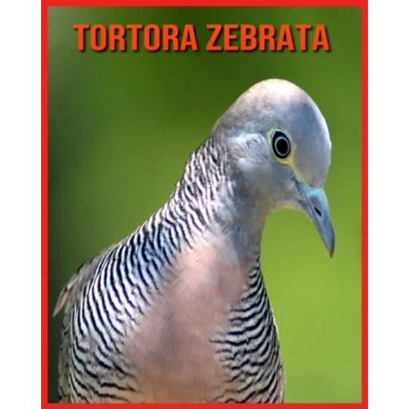 Tortora Zebrata: Fatti divertenti e immagini fantastiche