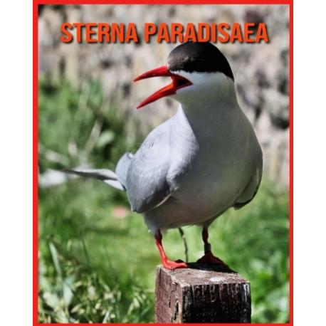 Sterna Paradisaea: Fatti super divertenti e immagini incredibili