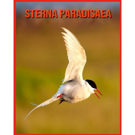 Sterna Paradisaea: Fatti di apprendimento divertenti sui Sterna Paradisaea