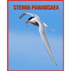 Sterna Paradisaea: Fatti sorprendenti sui Sterna Paradisaea