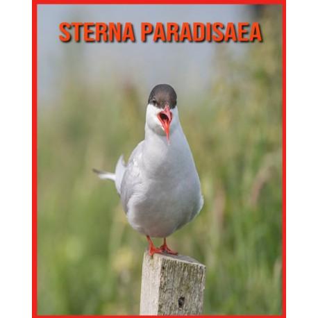 Sterna Paradisaea: Fatti sorprendenti e immagini sui Sterna Paradisaea