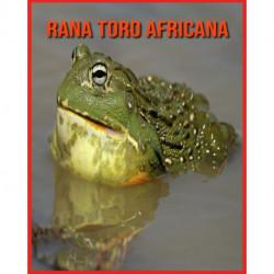 Rana Toro Africana: Fatti sorprendenti sui Rana Toro Africana