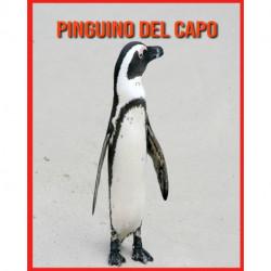 Pinguino del Capo: Immagini stupende e fatti divertenti sugli animali della natura