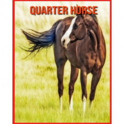 Quarter Horse: Fatti sorprendenti sui Quarter Horse