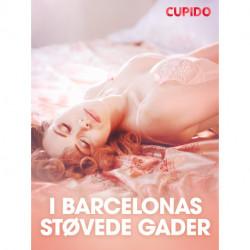I Barcelonas støvede gader - erotisk novelle