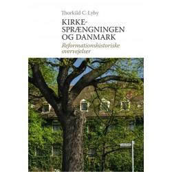 Kirkesprængningen og Danmark: Reformationshistoriske overvejelser