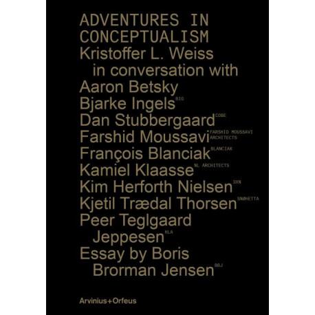Adventures in conceptualism