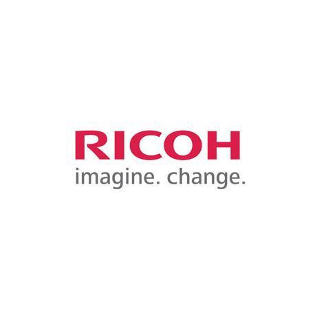 Ricoh/NRG SPC430DN yellow toner 15K (821075)