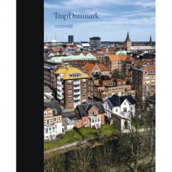 Trap Danmark: Odense: Trap Danmark. 6. udgave, bind 19