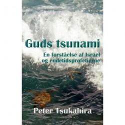 Guds tsunami: en forståelse af Israel og endetidsprofetierne
