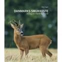 Danmarks smukkeste: en bog om rådyret året rundt